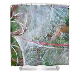 Fireweed Number One Shower Curtain by Brian Boyle