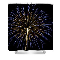 Fireworks Bursts Colors And Shapes 3 Shower Curtain