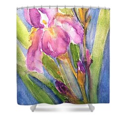 First Bloom Shower Curtain by Sherry Harradence