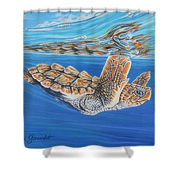 First Dive Shower Curtain by Jane Girardot