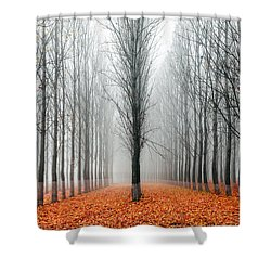 First In The Line Shower Curtain by Evgeni Dinev