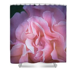 Shower Curtain featuring the photograph First Light by Patricia Babbitt