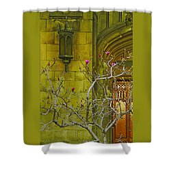 First Methodist Episcopal Church In Pasadena 1923 Shower Curtain by Ben and Raisa Gertsberg