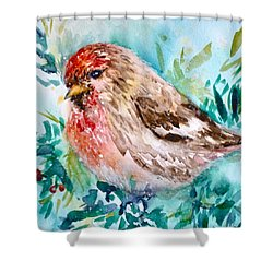 First Noel Shower Curtain by Beverley Harper Tinsley