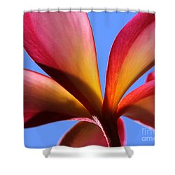 First Rise Shower Curtain