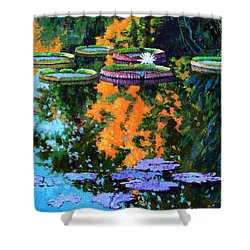 First Signs Of Fall Shower Curtain by John Lautermilch