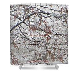 First Snowfall  Shower Curtain by Sonali Gangane