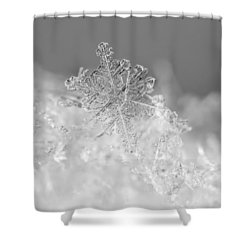 First Snowflake Shower Curtain by Rona Black