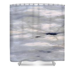Shower Curtain featuring the photograph First Thaw by Nadalyn Larsen