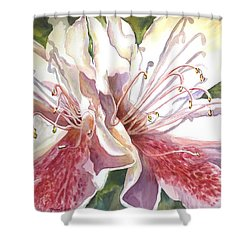 First Thoughts Of Spring Shower Curtain