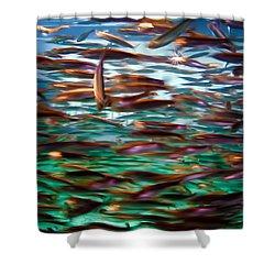 Fish 1 Shower Curtain by Dawn Eshelman