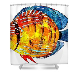 Fish 502-11-13 Marucii Shower Curtain