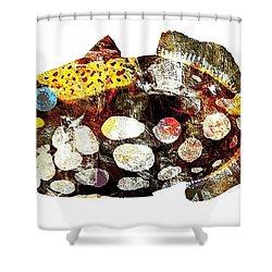 Fish 504-11-13 Marucii Shower Curtain by Marek Lutek