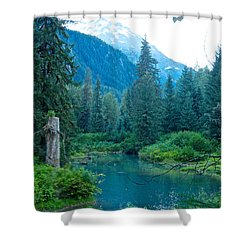 Fish Creek In Tongass National Forest By Hyder-ak  Shower Curtain