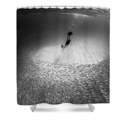 Fish Dive Shower Curtain by Sean Davey