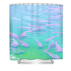 Shower Curtain featuring the photograph Fish by Rachel Mirror
