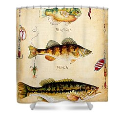 Fish Trio-c Shower Curtain by Jean Plout