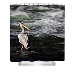 Fishing At Lehardy Rapids Shower Curtain