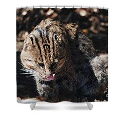 Fishing Cat Shower Curtain by DejaVu Designs