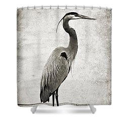 Fishing From The Dock Shower Curtain by Scott Pellegrin