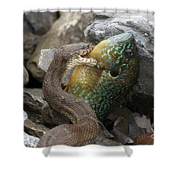 Fishing Shower Curtain by Jeannette Hunt