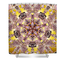 Five Stage Light Shower Curtain