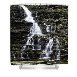 Fl Ricketts Falls Shower Curtain