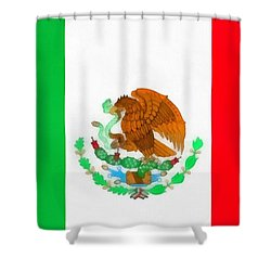 Flag Of Mexico Shower Curtain by Dan Sproul
