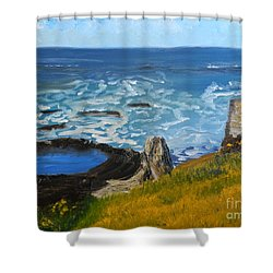 Flagstaff Point  Shower Curtain