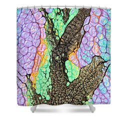 Flair Abstract Painting Shower Curtain