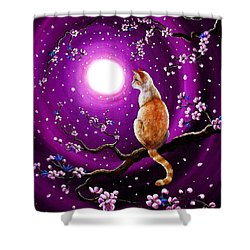 Flame Point Siamese Cat In Dancing Cherry Blossoms Shower Curtain by Laura Iverson