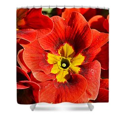 Flamenco Look Shower Curtain