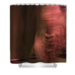 Flamenco Series 8 Shower Curtain