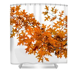 Flames Of The Season - Featured 3 Shower Curtain by Alexander Senin
