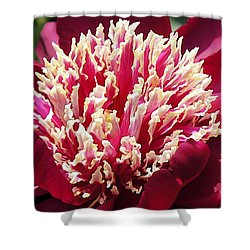 Flaming Peony Shower Curtain