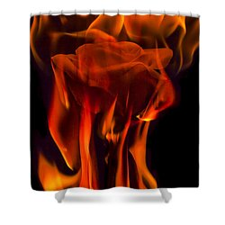 Flaming Rose Shower Curtain by Jon Glaser