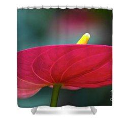 Flamingo Flower 1 Shower Curtain by Heiko Koehrer-Wagner