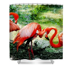 Flamingo Friends Shower Curtain by Beverly Stapleton