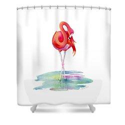 Flamingo Primp Shower Curtain
