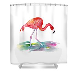 Flamingo Step Shower Curtain