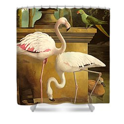 Flamingos Shower Curtain by Lizzie Riches