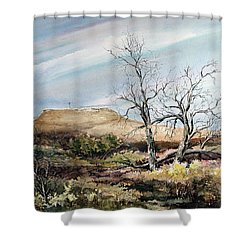 Flat Top Shower Curtain