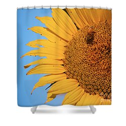 Shower Curtain featuring the photograph Flawed Beauty by Rima Biswas