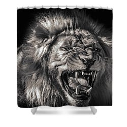 Flehmens Response Shower Curtain