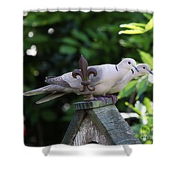 Fleur De Lis Dove Love Shower Curtain