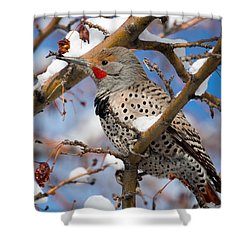 Flicker In Snow Shower Curtain