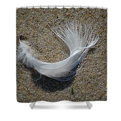 Shower Curtain featuring the photograph Flight by Christiane Hellner-OBrien