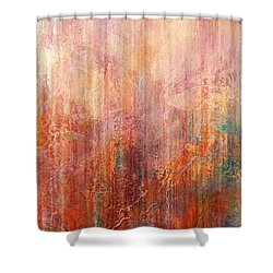 Flight Home - Abstract Art Shower Curtain