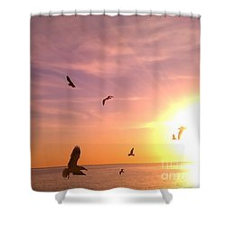 Flight Into The Light Shower Curtain