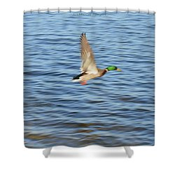 Flight On Waves Shower Curtain by Sonali Gangane